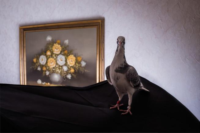 britta-studium-fotografie-ausbildung-fotograf-23
