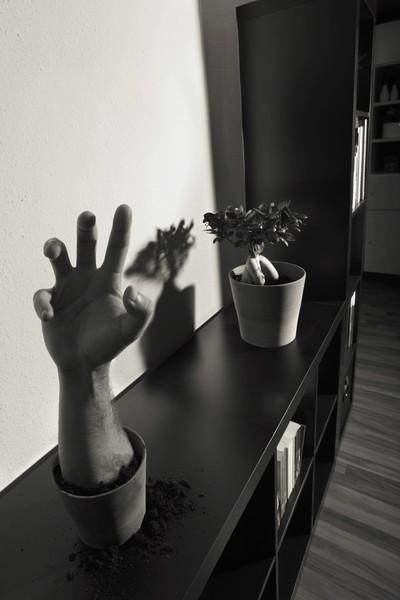 fotograf-ausbildung-umschulung-fotografie-studium-absolvent-mmueller09