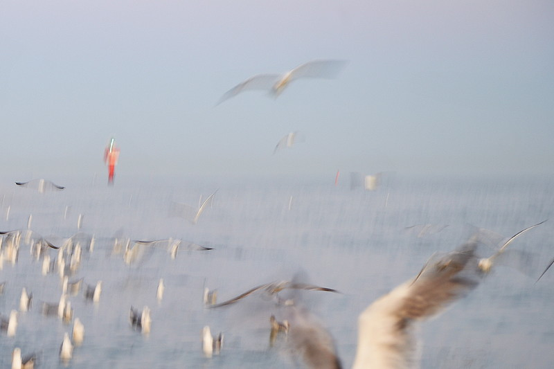 britta-strohschen-fotograf-ausbildung-berufsbegleitend-studium-fotografie-40