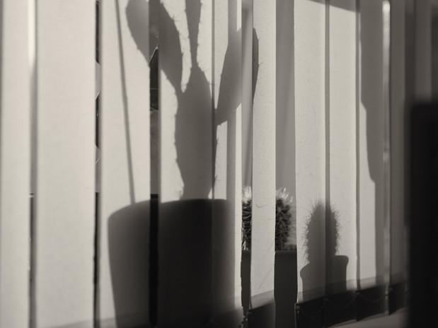 fotograf-ausbildung-umschulung-fotografie-studium-thorsten100