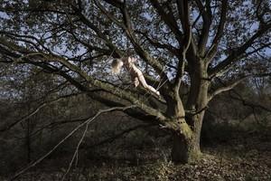 jenny-ahrbanner-fotograf-ausbildung-studium-fotografie-nrw-001