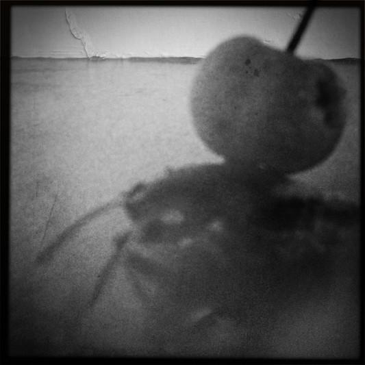 bewerbung-fotograf-ausbildung-koeln-studium-fotografie-19