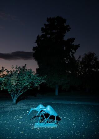 oliver-kuehnel-fotograf17